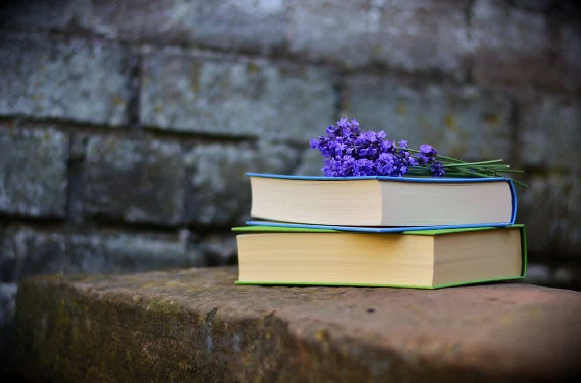 Empfehlenswerte Literatur & Medienbeiträge