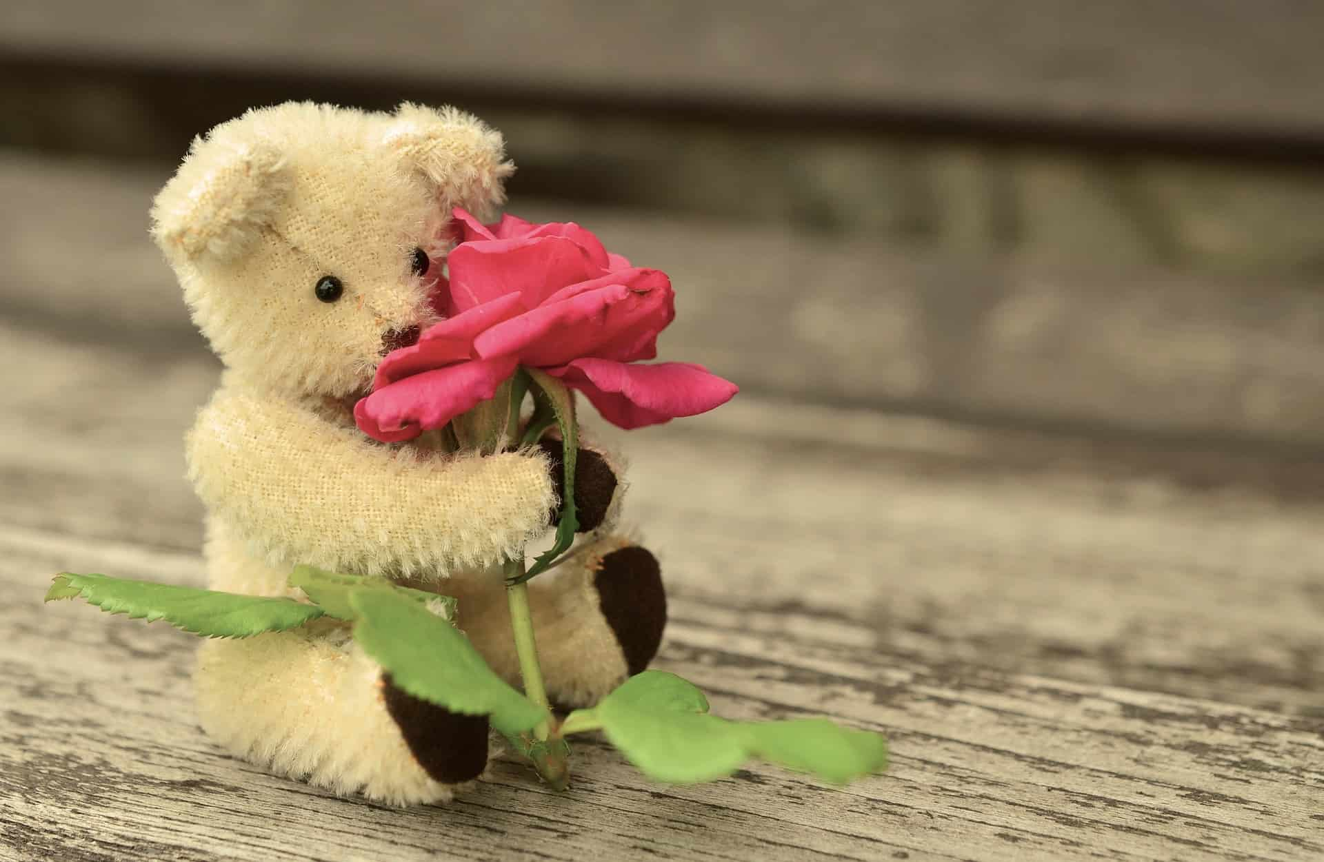 Teddy 889892 1920