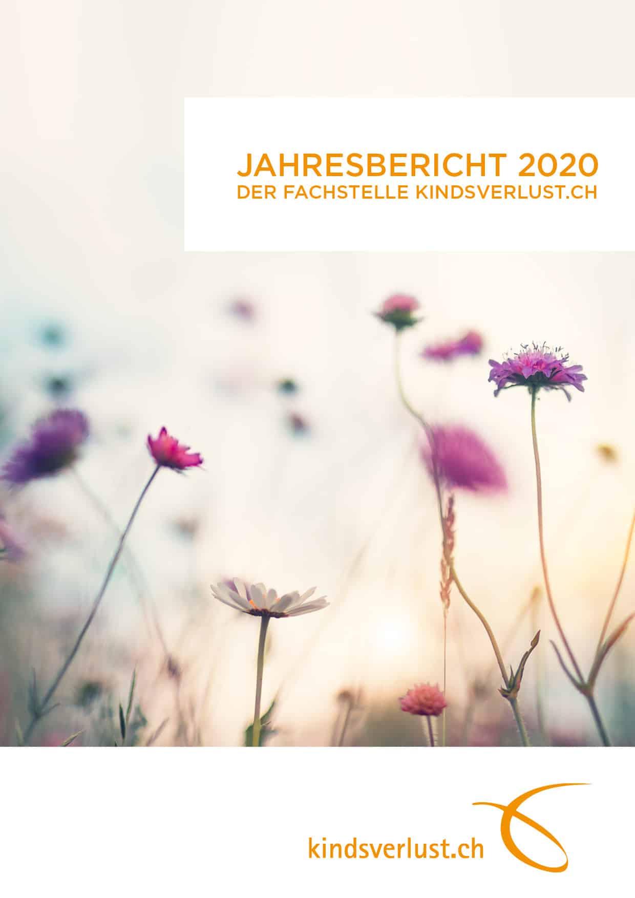 Unser Jahresbericht 2020 Ist Da!